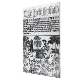 Medieval Herb Garden Stretched Canvas Prints