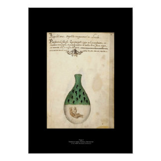 Medieval Italian Alchemy Poster Plate 4