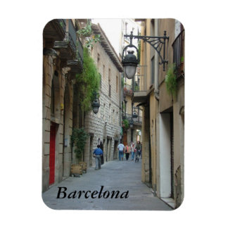 Medieval Street Rectangular Photo Magnet