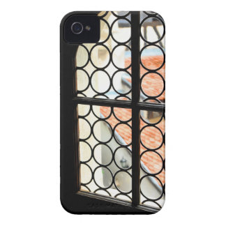 Medieval window Case-Mate iPhone 4 cases