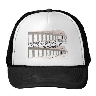Meditated Did not meditate comparison Hat