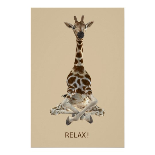 Meditating Giraffe Poster