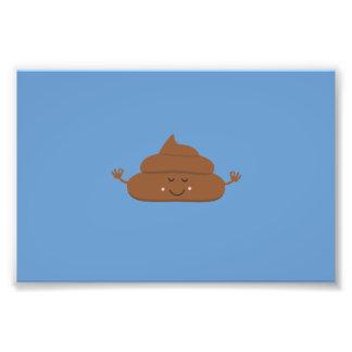 Meditating poo photo
