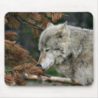 Meditating wolf mouse mat
