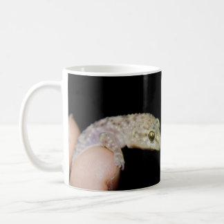 Mediterranean Gecko Coffee Mug