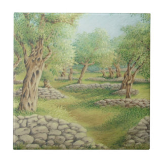 Mediterranean Olive Grove, Spain Ceramic Tile