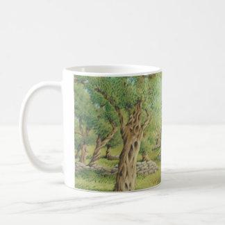 Mediterranean Olive Grove, Spain Classic White Mug