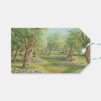 Mediterranean Olive Grove, Spain Gift Tags