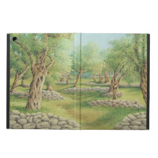 Mediterranean Olive Grove, Spain iPad Cover