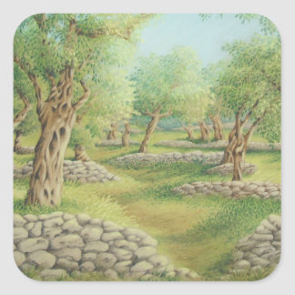 Mediterranean Olive Grove, Spain Square Stickers