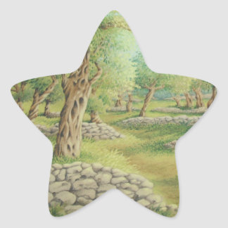 Mediterranean Olive Grove, Spain Star Stickers