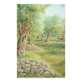 Mediterranean Olive Grove, Spain Stationery