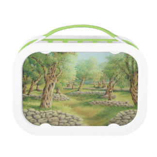 Mediterranean Olive Grove, Spain Yubo Lunchbox