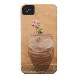 Mediterranean Urn Blackberry Case
