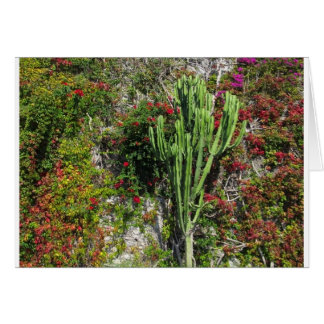 Mediterranean wall decoration with cactus greeting card
