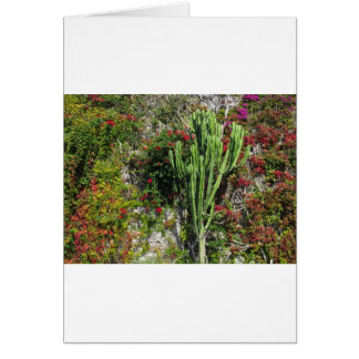 Mediterranean wall decoration with cactus card