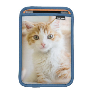 Medium Haired Orange And White Kitten iPad Mini Sleeve