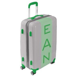MEDIUM Silver + Light Green Monogrammed Luggage