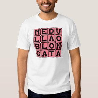 Medulla Oblongata, Lower Brain Stem Shirts