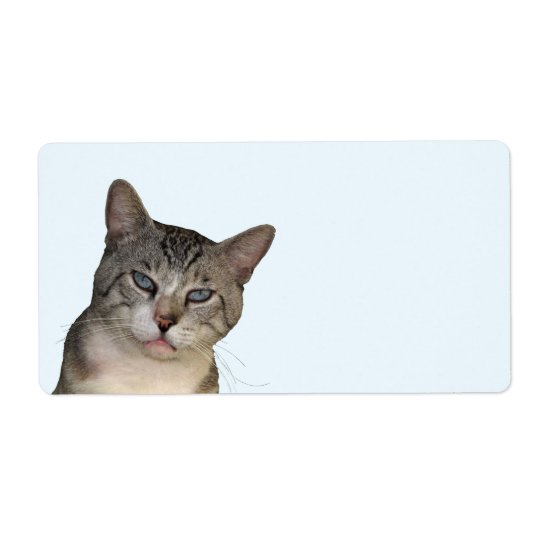 Meece The Cat Shipping Labels