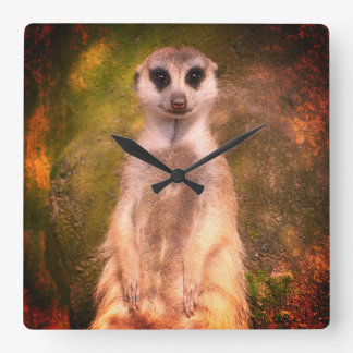 Meerkat 001.02.F Square Wall Clock