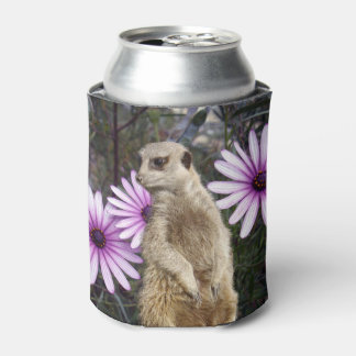 Meerkat And Daisies, Can Cooler