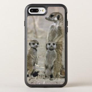 Meerkat Baby Sitter And Pups ( Suricata Suricata ) OtterBox Symmetry iPhone 8 Plus/7 Plus Case