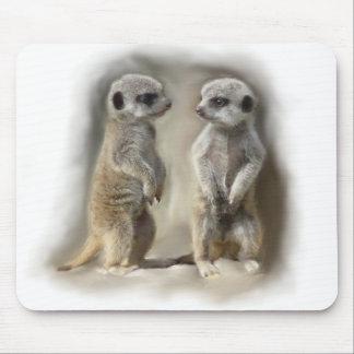 Meerkat baby twins mouse mat