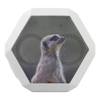 Meerkat White Boombot Rex Bluetooth Speaker