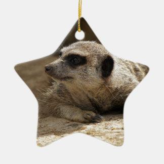 Meerkat Ceramic Star Decoration