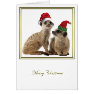 Meerkat Christmas 1 Greeting Card