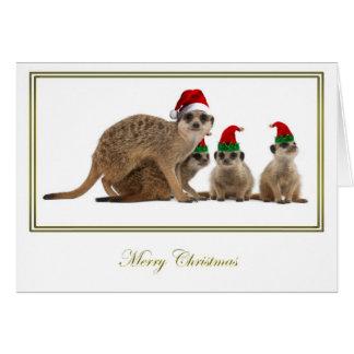 Meerkat Christmas 3 Greeting Card