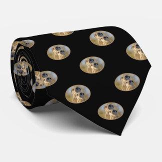 Meerkat Couple Pattern on Black Tie