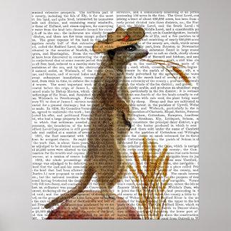 Meerkat Cowboy Poster
