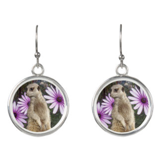 Meerkat_Daisies,_Ladies_Round_Silver_Drop_Earrings Earrings