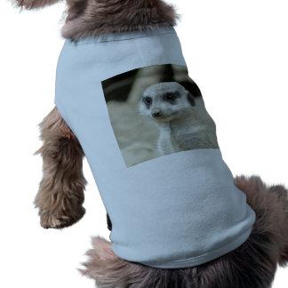 Meerkat Doggie Tshirt