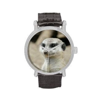 Meerkat Watches