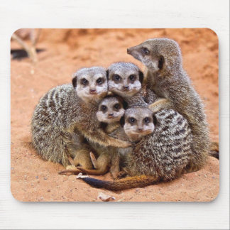 Meerkat family mouse mat