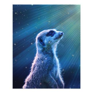 """Meerkat 4.5"""" X 5.6"""" Flyer"""