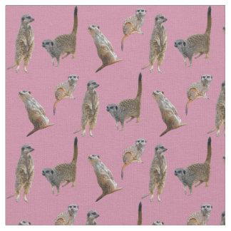 Meerkat Frenzy Fabric (Pink)