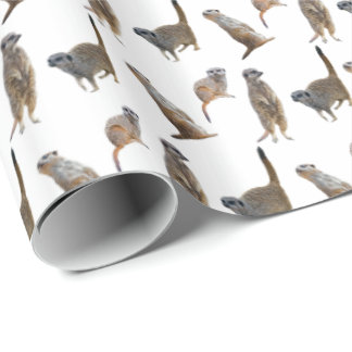 Meerkat Frenzy Wrapping Paper (Choose colour)