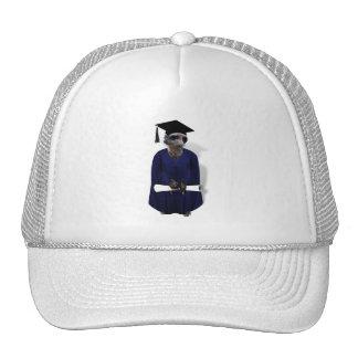 Meerkat Graduate W/ Blue Gown & Diploma Hat