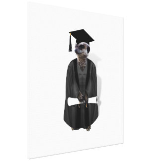 Meerkat Graduate W/Grey Gown & Black Sash Stretched Canvas Print