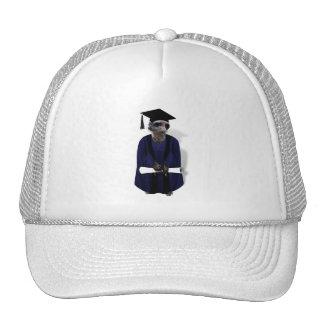 Meerkat Graduate with Blue Gown w Black Sash Mesh Hat