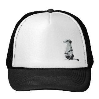 Meerkat Hat