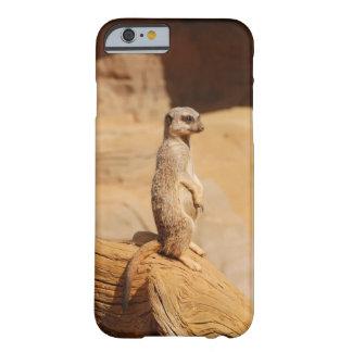 Meerkat iphone6/6s case