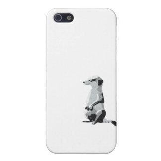 Meerkat iPhone 5/5S Cover