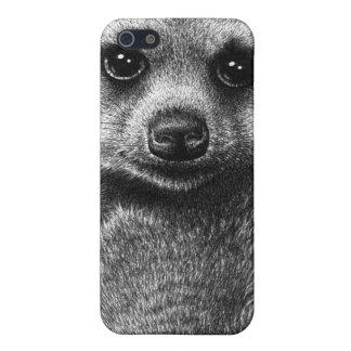 Meerkat iPhone 5/5S Covers