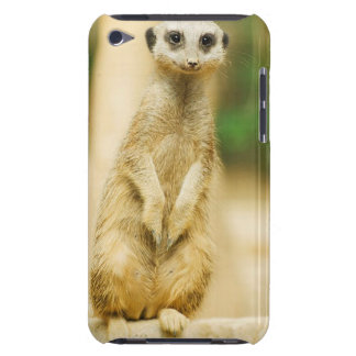 Meerkat iPod Touch, Barely There case Barely There iPod Cover