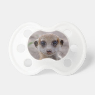 Meerkat Juvie - Pacifier